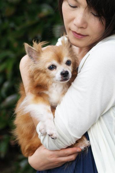 愛犬を抱っこ