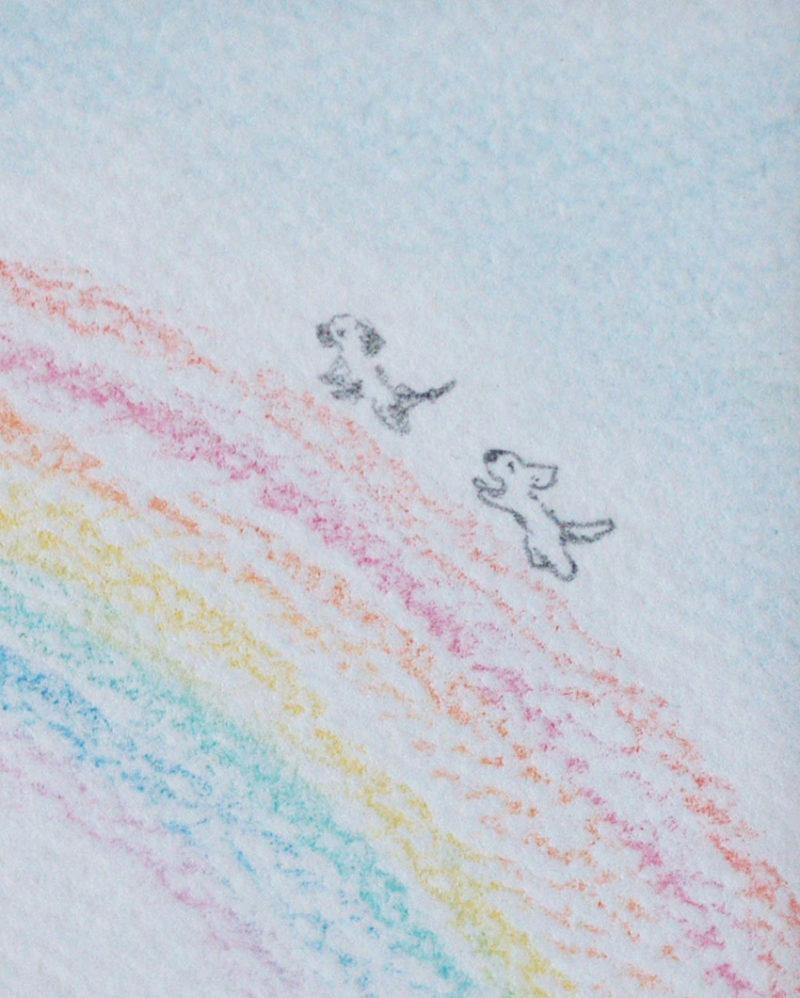 虹の橋のわんわん