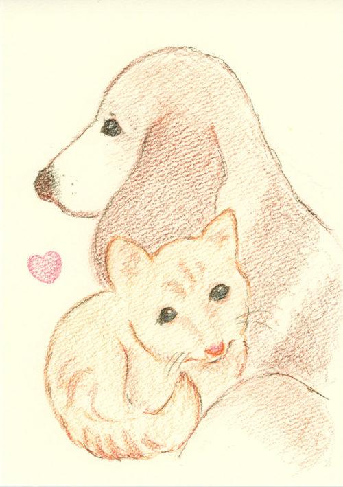 犬と猫の絵